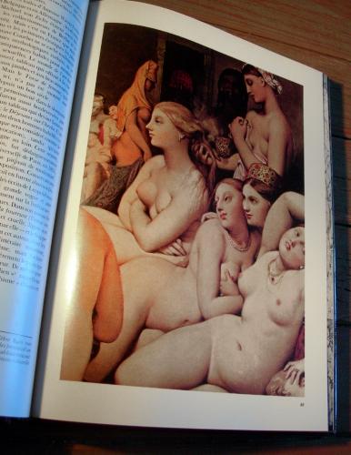 art érotique,érotisme,henry miller,bellmer,dali,balthus,leonor fini,peinture