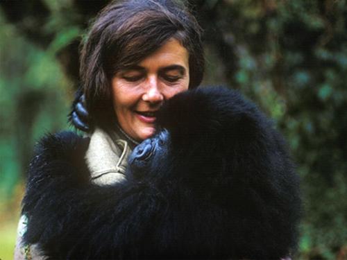 Dian_Fossey_1.jpg